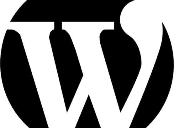 wordpress-logo-cws
